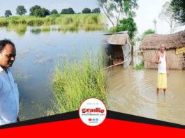 सुल्तानपुर में बाढ़ के कारण फसलें बर्बाद, प्रशासन बैठा मौन